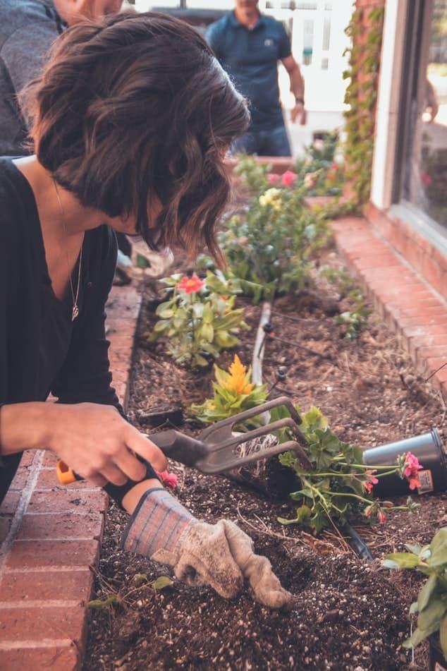Te damos consejos para tener un huerto en casa de forma sostenible